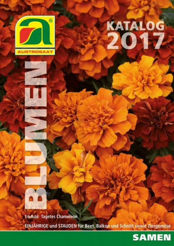 Katalog semena cvetlic 2017