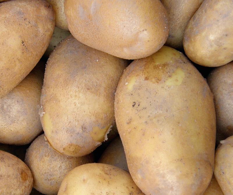 Sorta krompirja Jelly