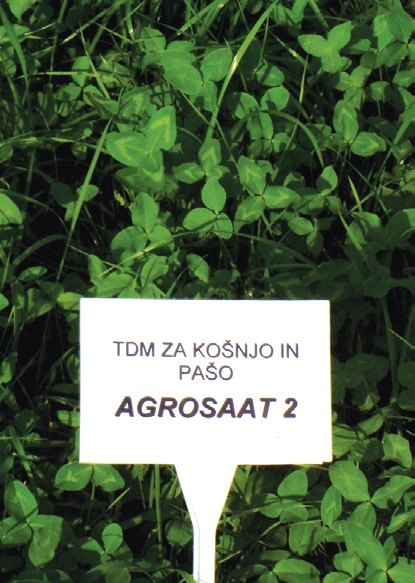 Travna mešanice Agrosaat 2
