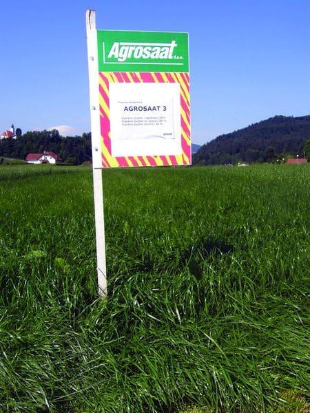 Travna mešanica Agrosaat 3