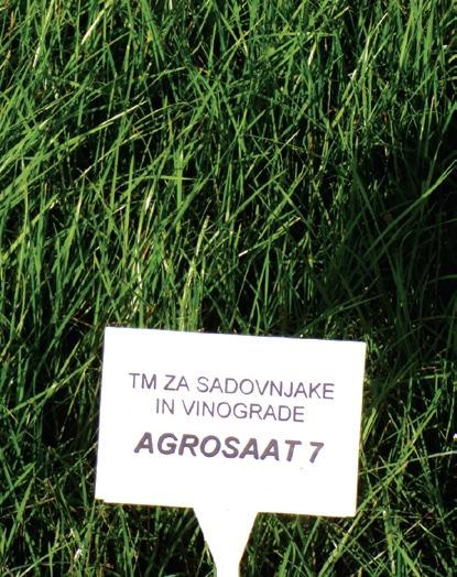 Travna mešanica Agosaat 7