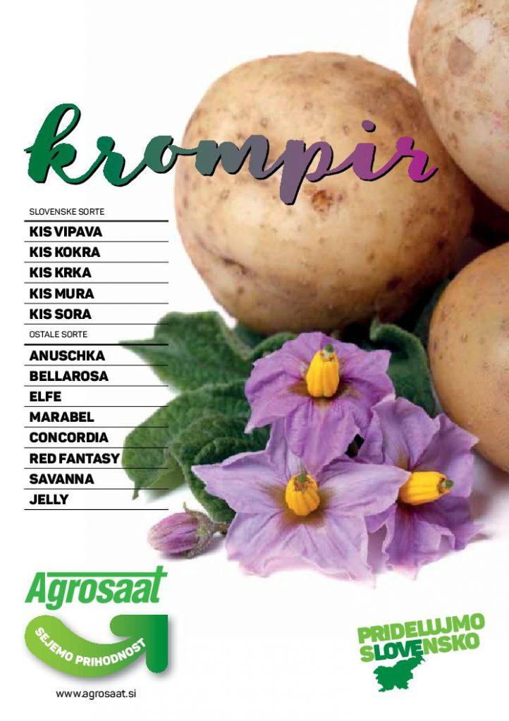 Zgibanka krompir 2017