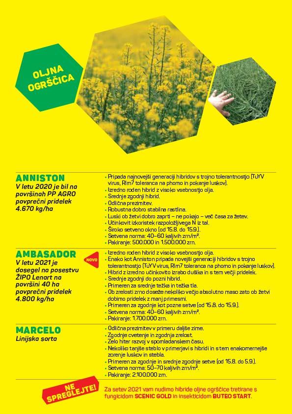 agrosaat-oljna-ogrscica-letak-2021